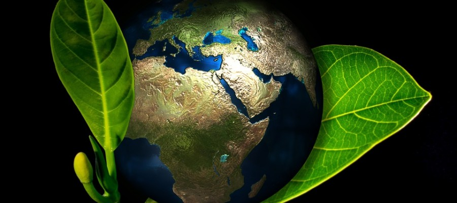 Saint-Etienne : l'AFPA propose des stages « développement durable »